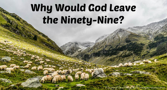 Why Would God Leave the Ninety-Nine?