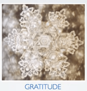 Water when it is exposed to gratitude.