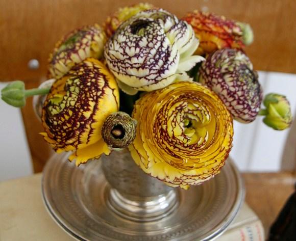 #2flowergirls Titelbild Rnaunkel gelb weiss lila Happyhomeblog