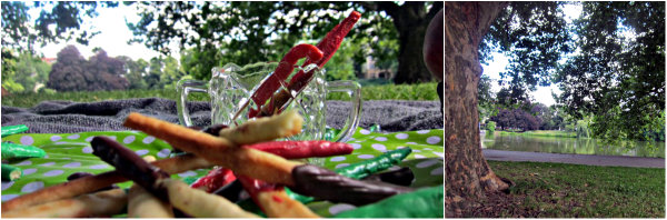 Frau Bunt kocht im happyhomeblog gebackenes Mikado Picknick fuer Kinder