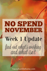 No Spend November Update: what's working and what isn't