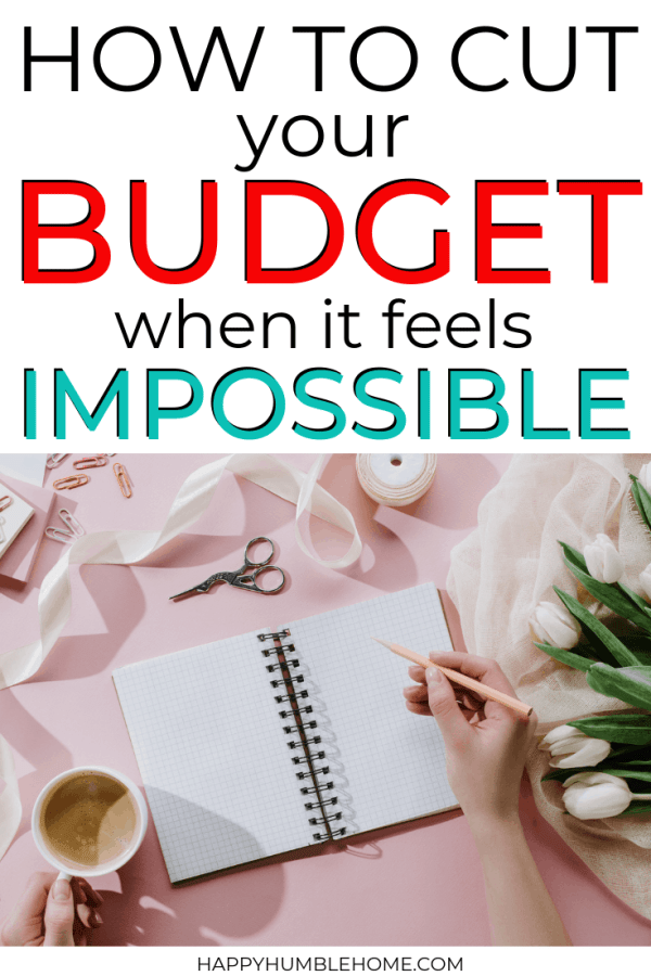 How to Cut Your Budget when it feels Impossible
