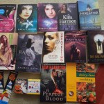 Boxing Day Book Haul – Allbooks4less