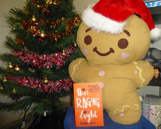 Christmas Giveaway – Win This Raging Light by Estelle Laure! (INT)