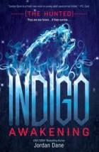 indigoawakening