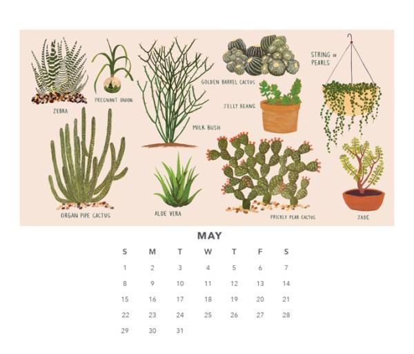 small adventure calendar 2016 2