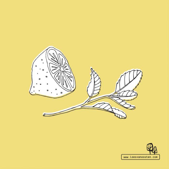Aan de tekentafel Loes van Oosten Lemon HappyMakersBlog