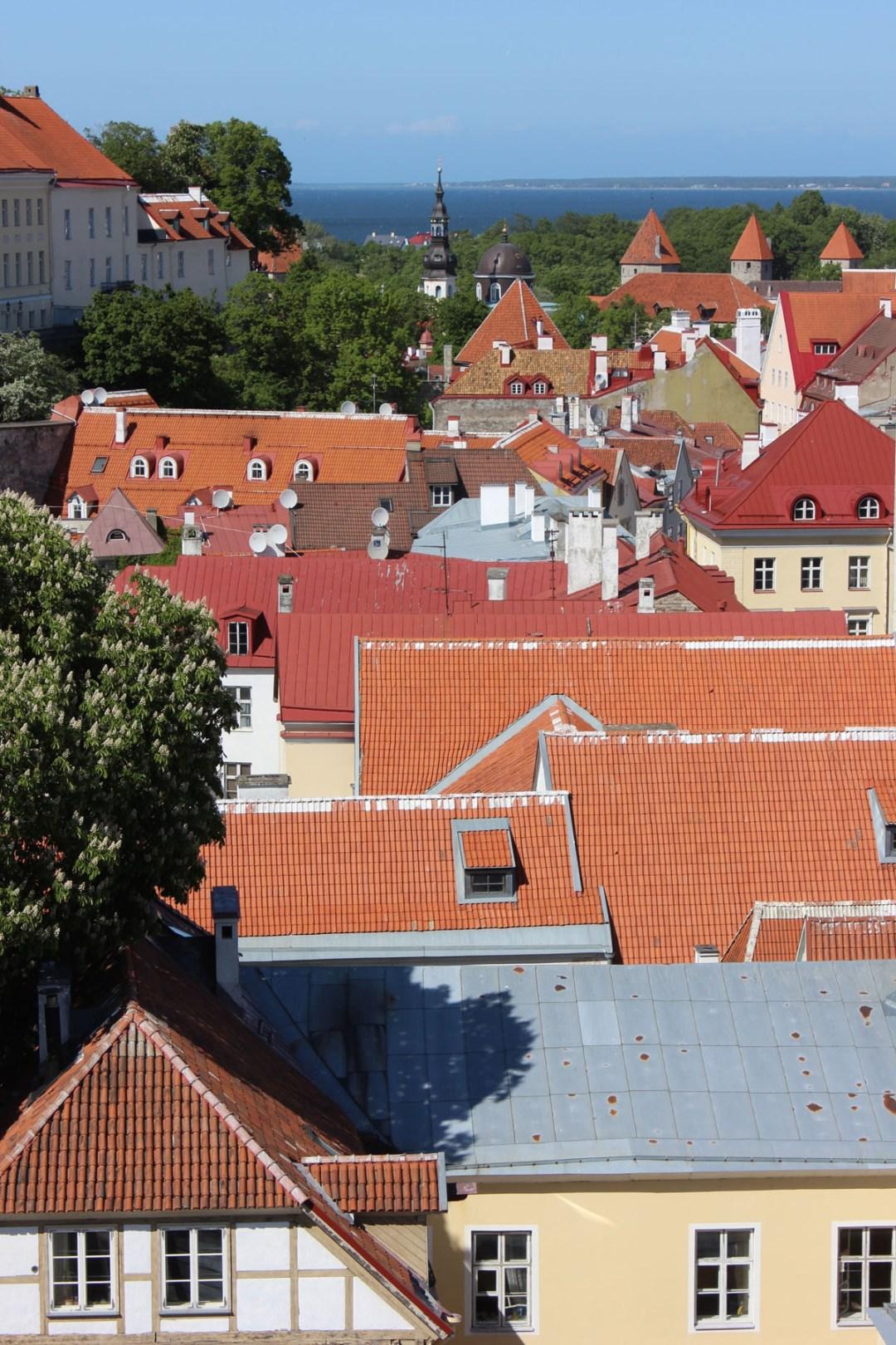 Tallinn-24