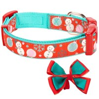 Cute Girl Dog Collars That Are Best For Female Dogs