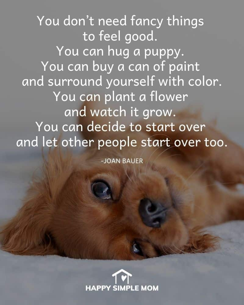 You don't need fancy things to feel good. You can hug a puppy. You can buy a can of paint and surround yourself with color. You can plant a flower and watch it grow. You can decide to start over and let other people start over too. Joan Bauer