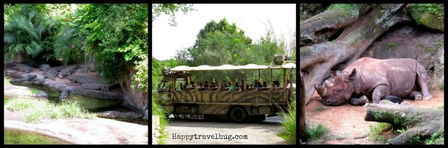 Kilimanjaro safari ride at Animal Kingdom in Disney World