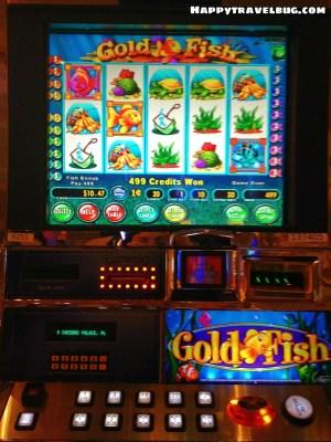 My favorite slot machine, the Goldfish