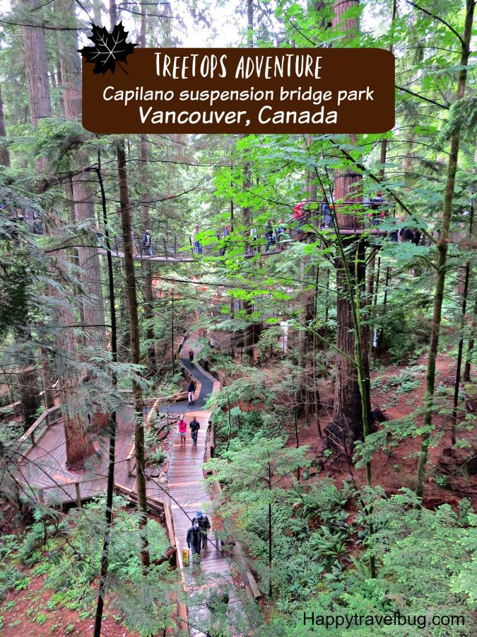 Treetops Adventure at Capilano Suspension Bridge Park in Vancouver, Canada