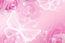 Pink roses, stars and transparent  butterflies