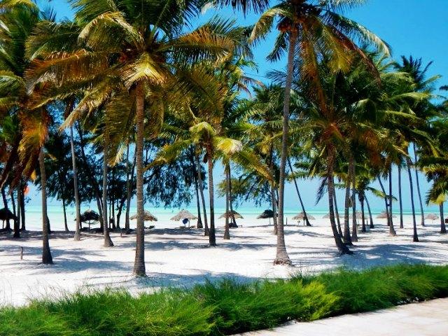 Zanzibar Cristal Resort Paje  Kite Surf Paje  Viaggi Zanzibar  Haraka Viaggi