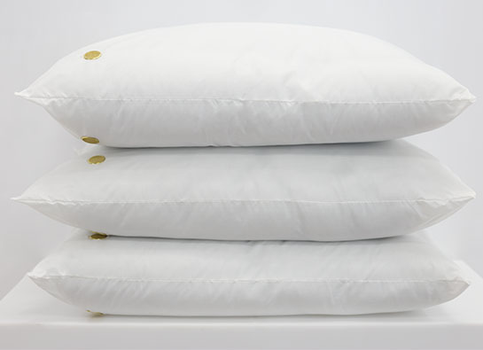 Healthcare Product Line  Pillows