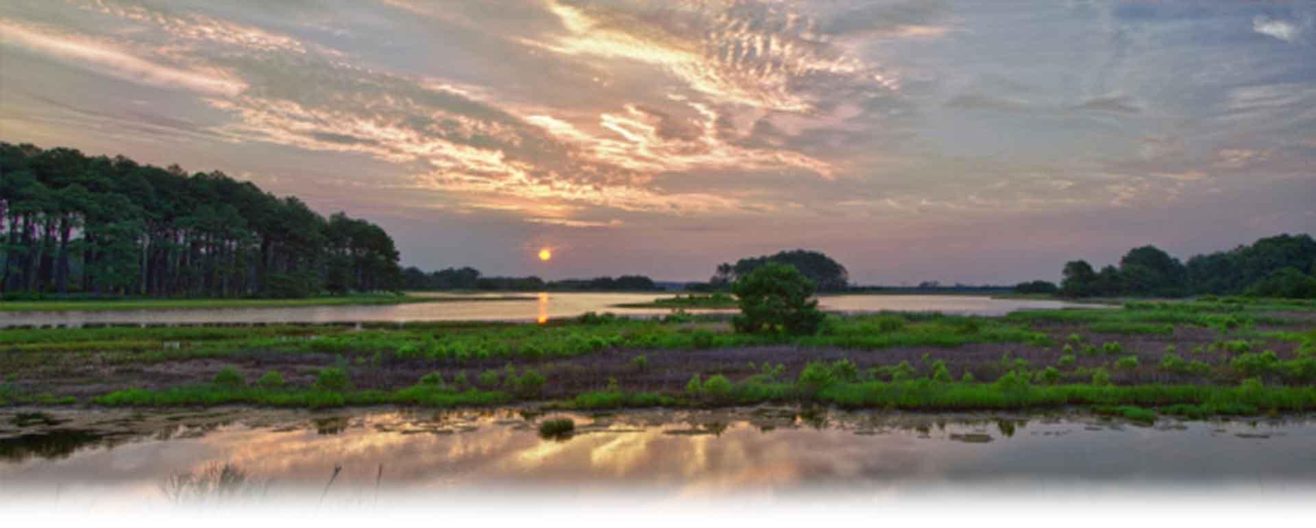 Visit Chincoteague Island  Harbour Rentals