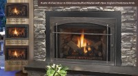 Gas Fireplaces/Gas inserts/Gas stoves - Harding the Fireplace