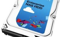 Seagate Enterprise NAS HDD 6TB SATA III HDD Review