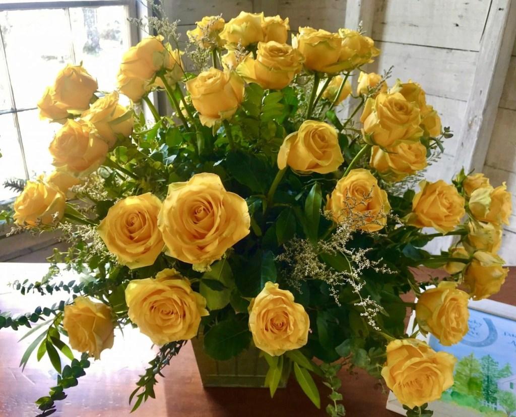 Yellow roses at Hardy Farm