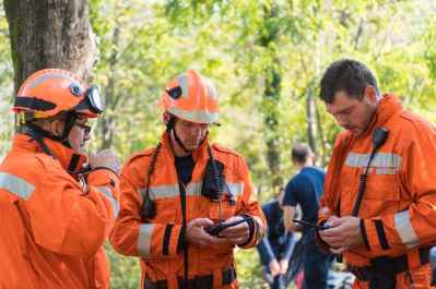 The Main Dangers of Hiring Unlicensed Tree Specialists