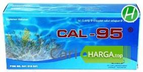 Harga Cal 95