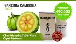 Harga Garcinia Cambogia Forte