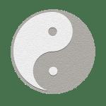 yinyang02paper