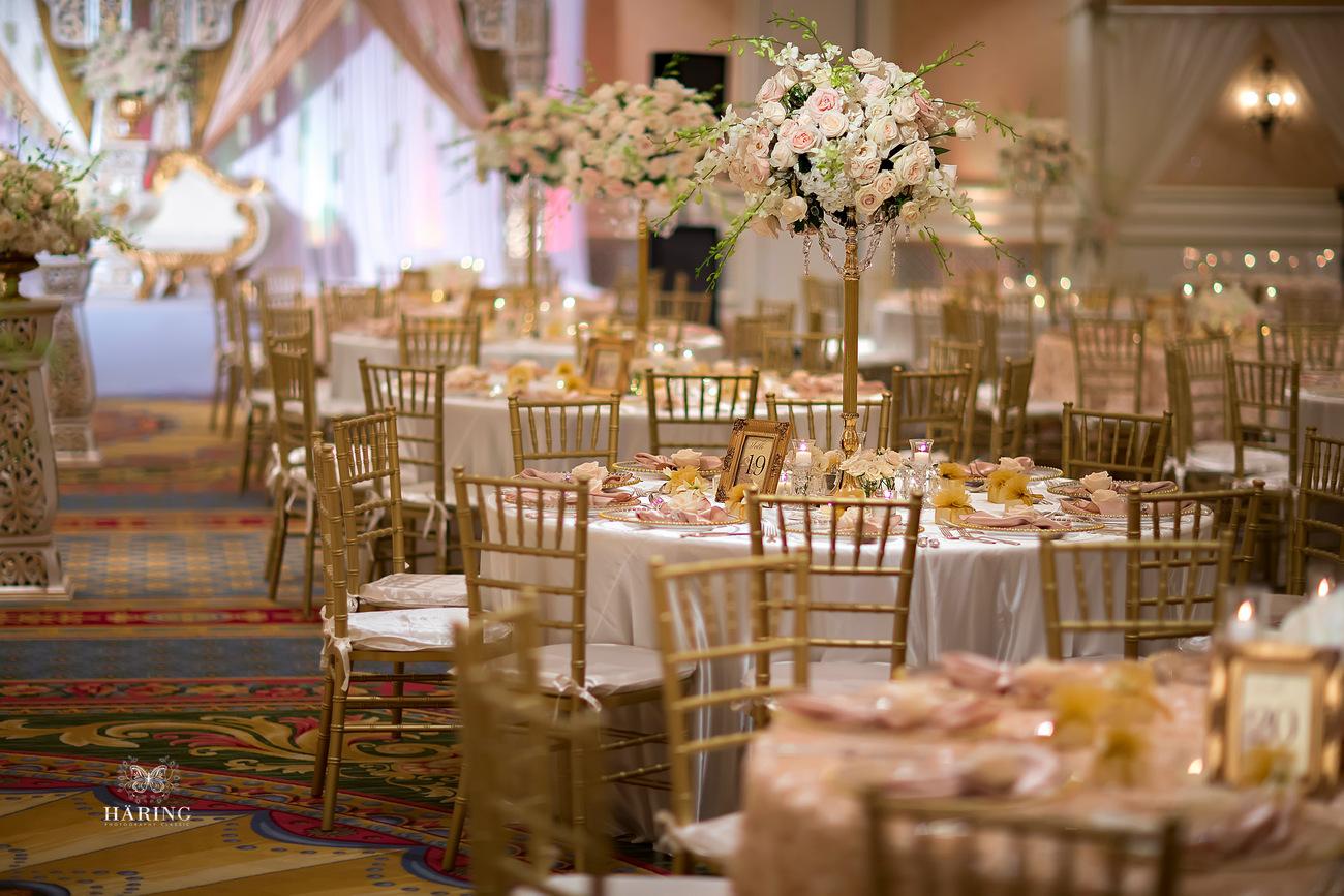 Rabia  Pakistani Wedding Photos  Ritz Carlton Orlando
