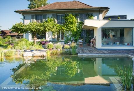 Blick über Schwimmteich zu Haus und Sitzplatz mit Platane