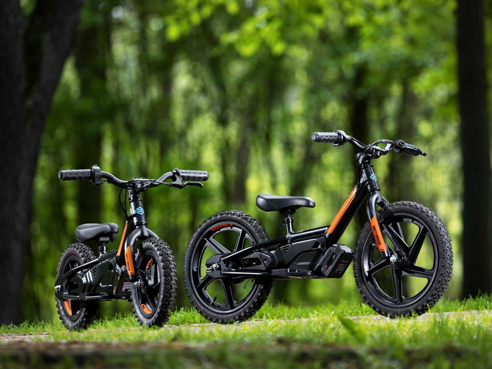 electric motorcycles harley davidson