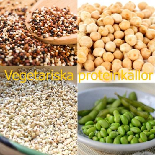 protein på vegetarisk kost
