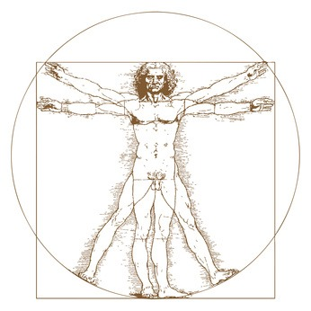 Vitruvian Man by Leonardo Da Vinci - vector illustration