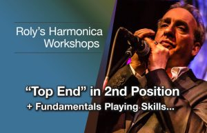 Harmonica Workshop – top end