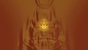 BUDDHA SERIES.74. © David Hykes 2011
