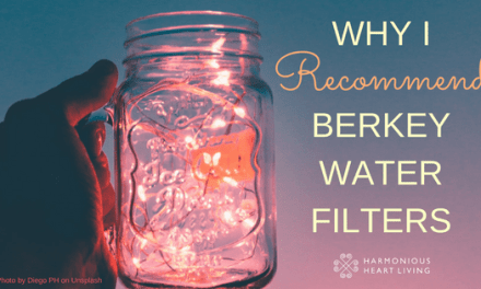 WHY I RECOMMEND BERKEY WATER FILTERS