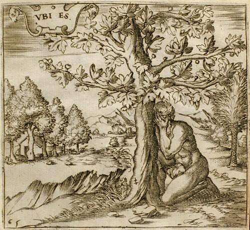 Montenay, Georgette de: Emblemes ou devises chestiennes (1571)