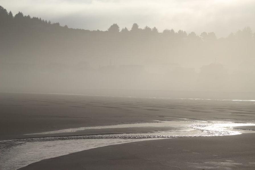 Morning, Oregon Coast