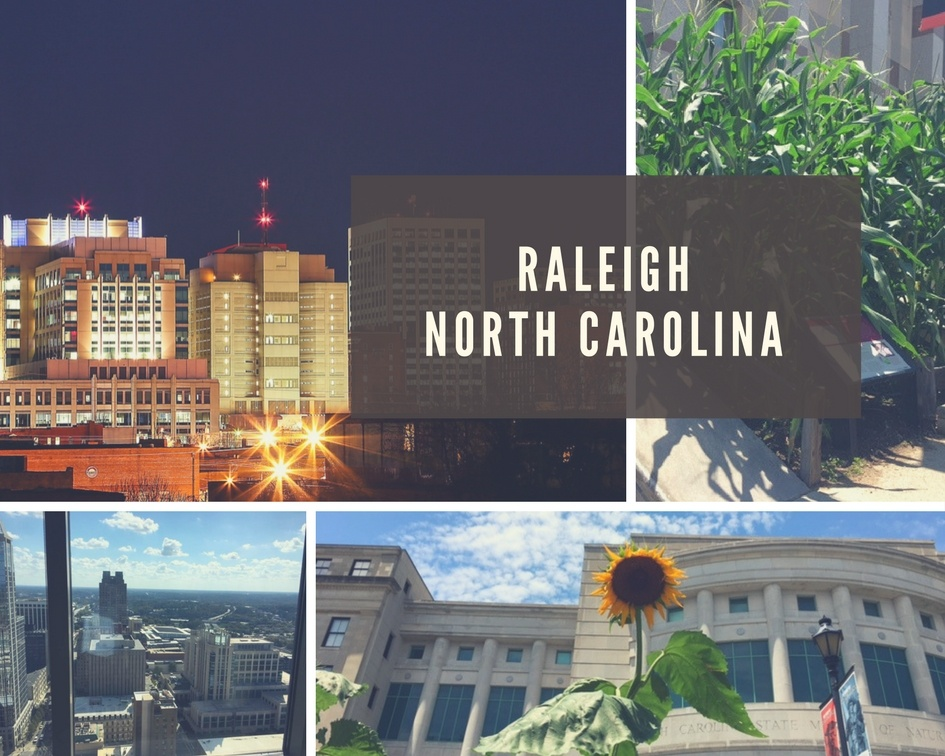 moving to raleigh nc north carolina