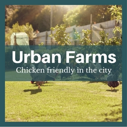 urban farms raleigh cary nc