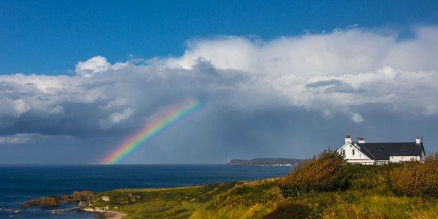 Rainbow-20140828-_ALL4587