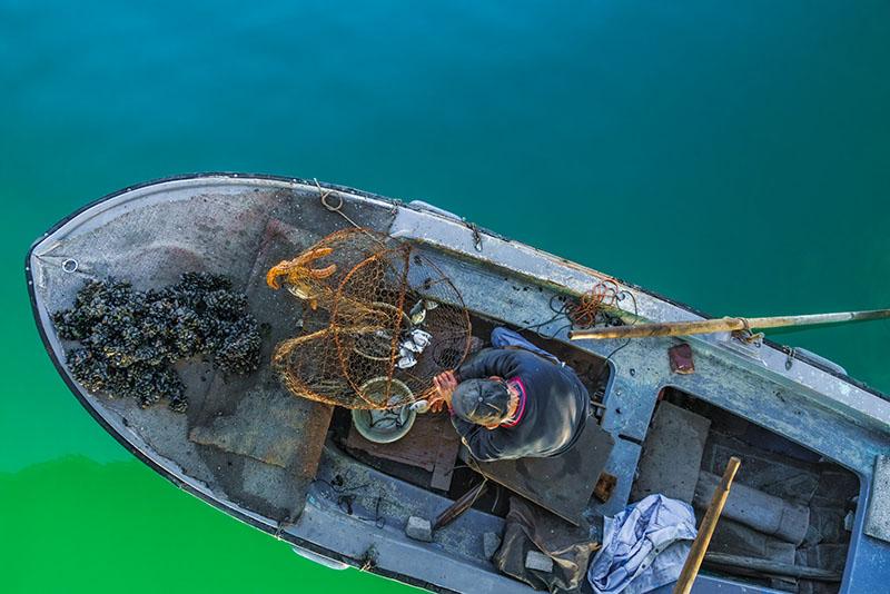 Zadar Fisherman