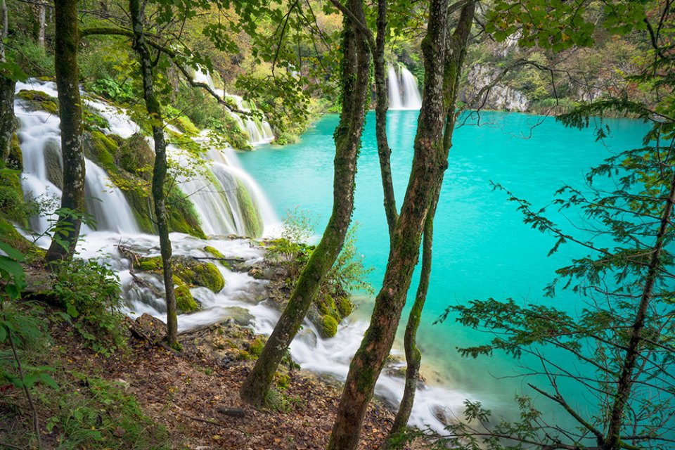 Plitvice Through the Trees