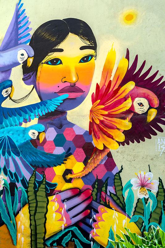 Rebirth, the Phoenix