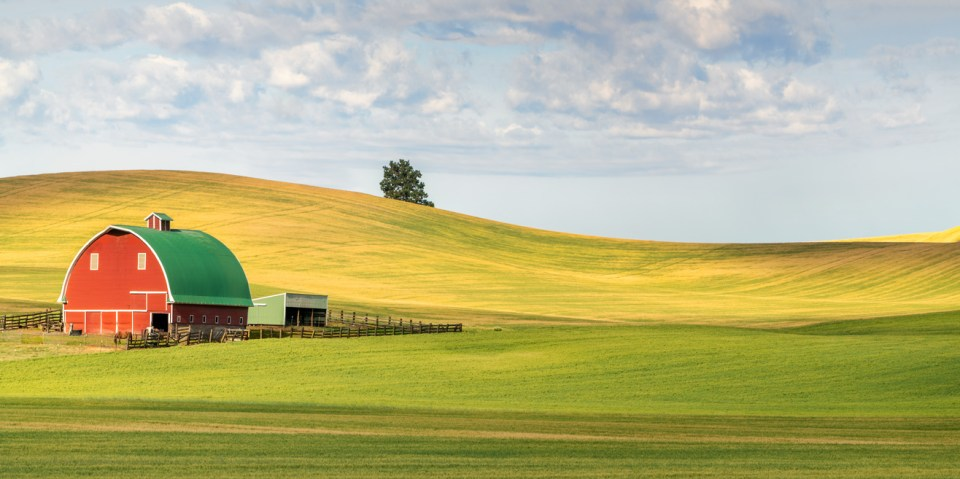 Barn in the Palouse