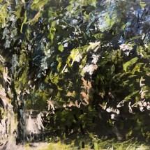 Banyan Tree #4