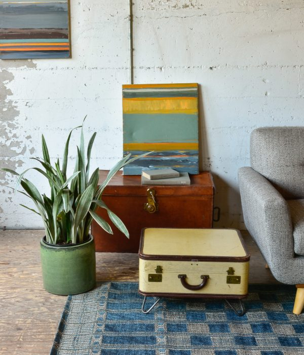 Chest and plant in living room