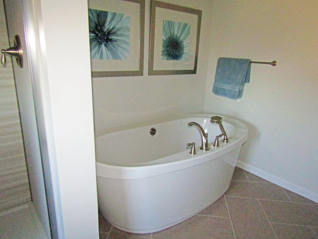Choreograph Shower & Freestanding Tub (B-92)