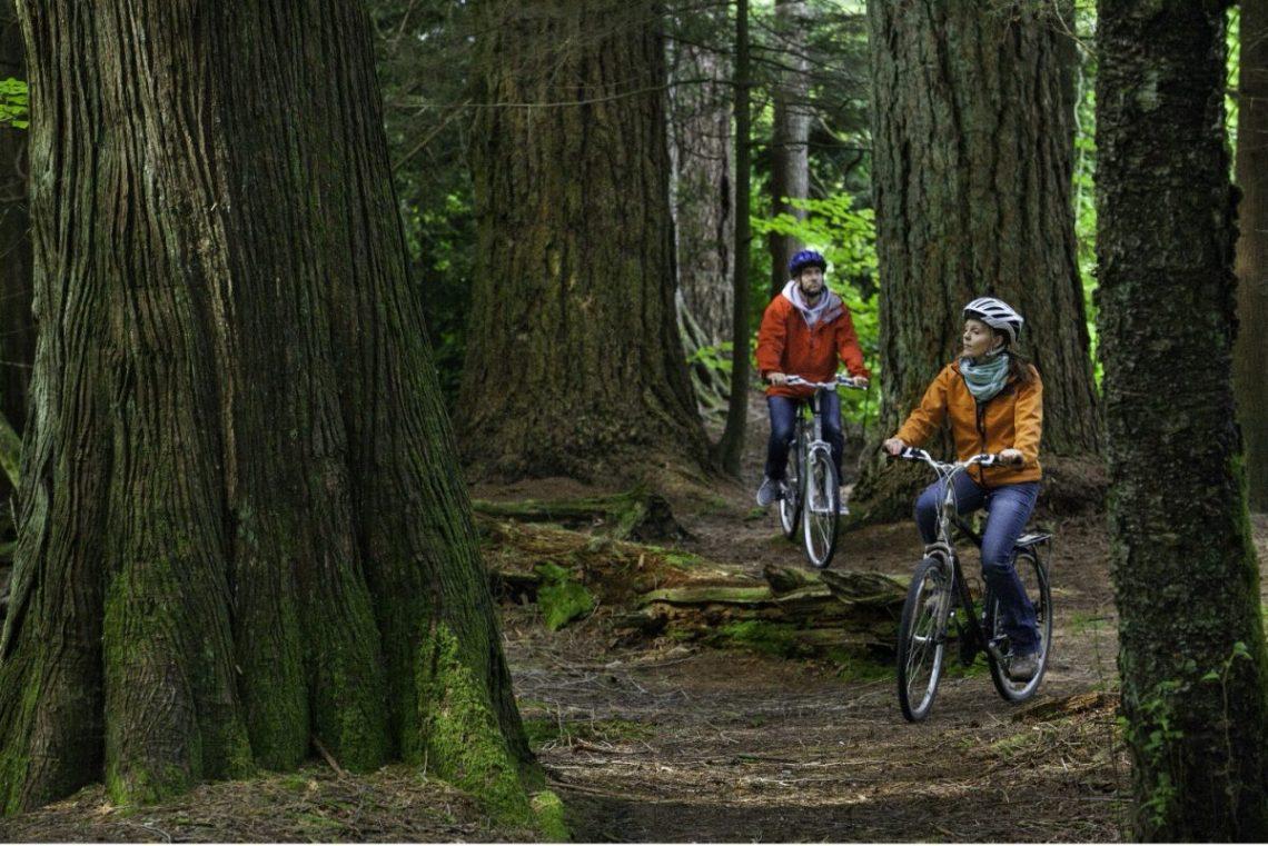 Best Biking Trails near Harrison Hot Springs