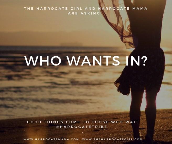 Harrogate Blogger, Harrogate Mama, Harrogate Mama Blog, Harrogate Blog, Harrogate Tribe Event, Summer Event,  Summer Night Out, Blogger, Harrogate, Mama, Blog,Who Wants In Tease.jpg